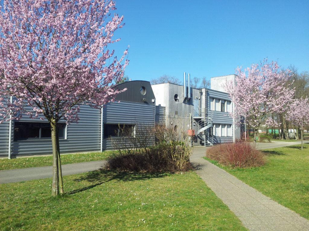Le lycée au printemps